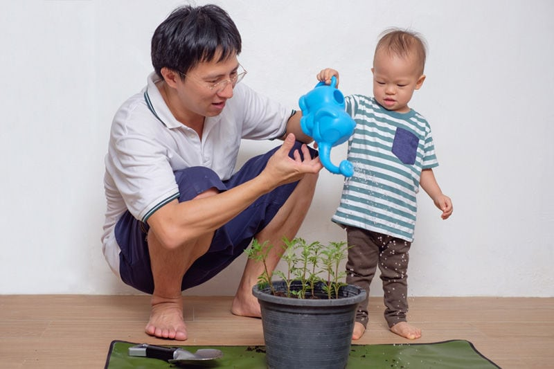 Father and son watering a plant